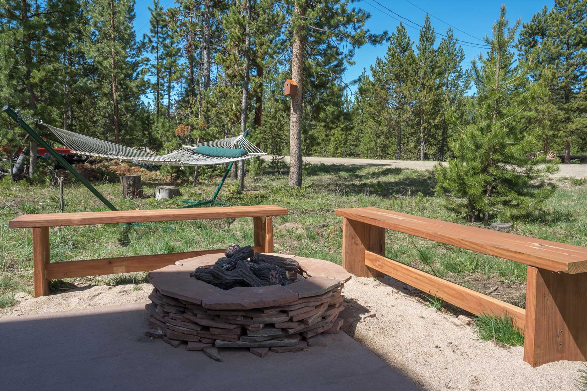 Fire Pit and Hammock